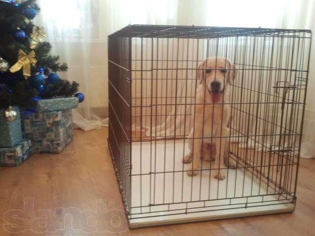 Как сделать клетку для собаки своими руками