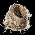 Гнезда, скворечники