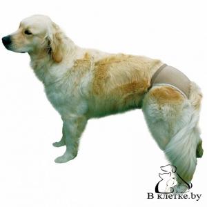 Штанишки гигиенические для собак Trixie L Беж