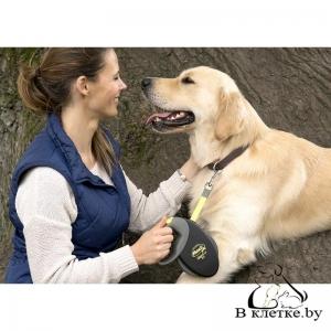 Рулетка-ремень для собак Flexi Giant M
