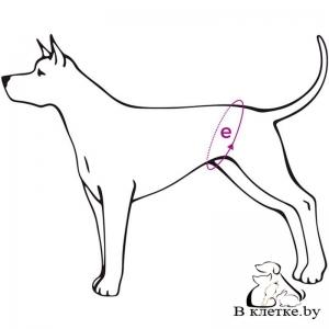 Гигиенические трусы №1 Ami Play Yorkshire Terrier
