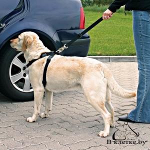 Ремень безопасности (шлея+поводок) для собак Trixie M