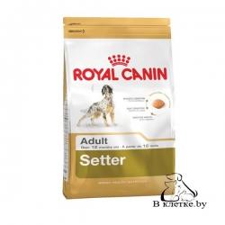 Сухой корм Royal Canin Setter 12 кг