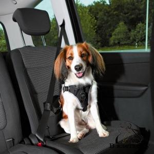 Шлея с ремнем безопасности для автомобиля Trixie SM