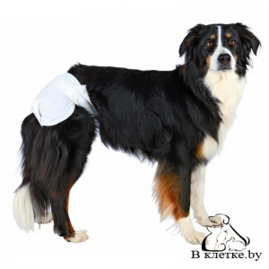 Подгузники для собак Trixie L