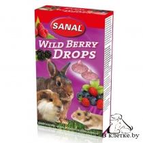 Лакомство грызунам с лесными ягодами Sanal Wild Berry Drops
