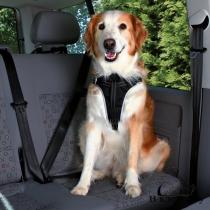 Шлея с ремнем безопасности для автомобиля Trixie L