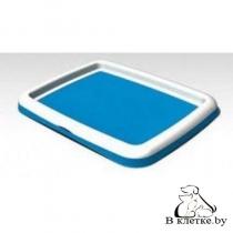 Туалет без столбика Bergamo Gastone Large Голубой