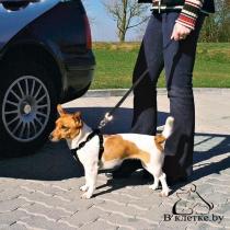 Ремень безопасности (шлея+поводок) для собак Trixie ХS