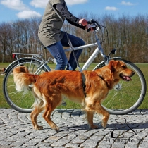 Поводок для велопрогулок и пробежек Trixie