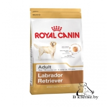Сухой корм Royal Canin Labrador