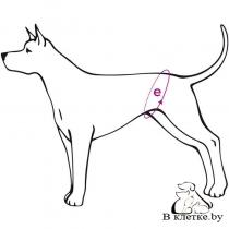 Гигиенические трусы №5 Ami Play Labrador