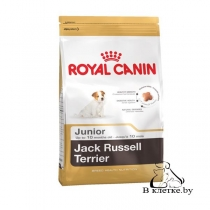 Сухой корм Royal Canin Jack Russel Junior