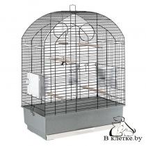 Клетка для волнистых и попугаев корелла Ferplast VIOLA