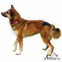 Штанишки гигиенические для собак Trixie M Черн
