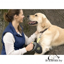 Рулетка-ремень Flexi для собак Giant L