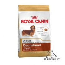Сухой корм Royal Canin Dachshund