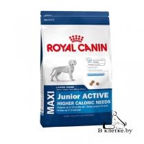 Корм для активных щенков Royal Canin Maxi Junior Active