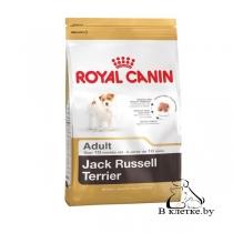 Сухой корм Royal Canin Jack Russell